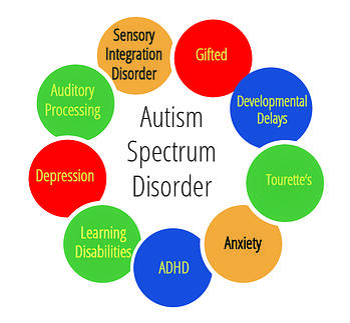 Autism_Spectrum_Option2-100